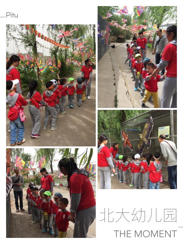 【北大附属实验学校幼儿园】主题活动——参观动物园